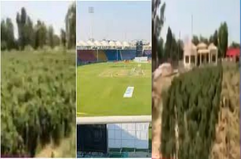 पाकिस्तान में क्रिकेट स्टेडियम में की जा रही खेती, करोड़ों खर्च करके किया था निर्माण, शोएब अख्तर ने जताया दुख