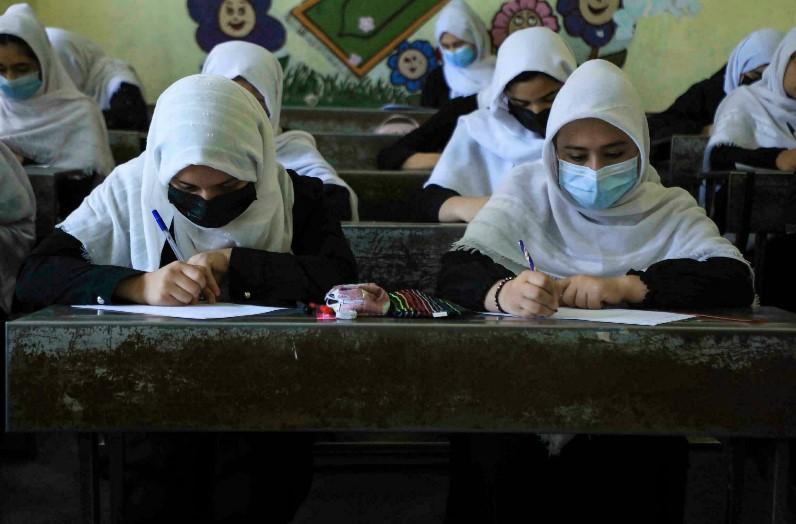 'लड़के-लड़कियों को एक साथ पढ़ने की अनुमति नहीं देंगे' तालिबान सरकार के उच्च शिक्षा मंत्री का फरमान