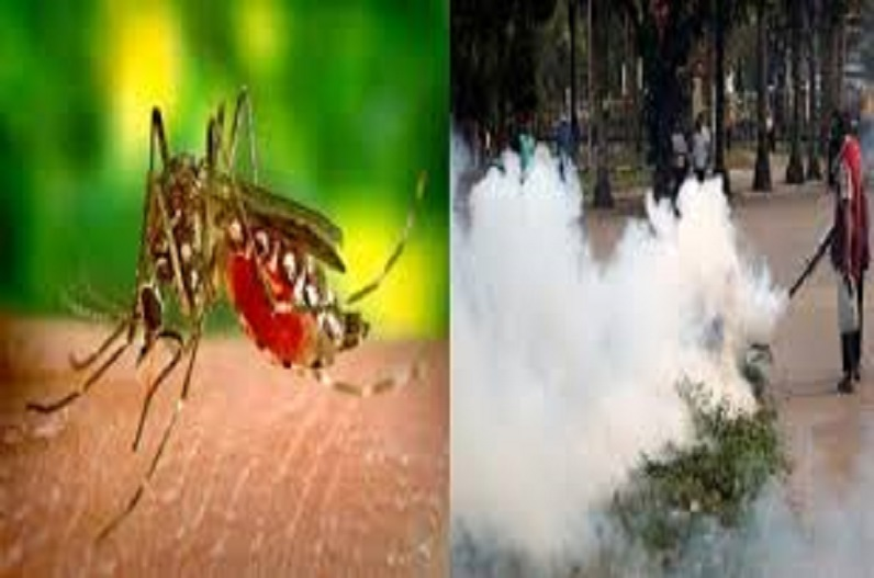 डेंगू संक्रमित मरीज के घर से 150 मीटर के दायरे में होगी जांच, बीते दो दिन में मिले थे 11 मरीज