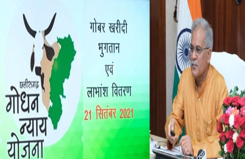 गो-सेवा के क्षेत्र में छत्तीसगढ़ बना उदाहरण, पशुपालकों, गोठान समितियों को 5.24 करोड़ रुपए जारी