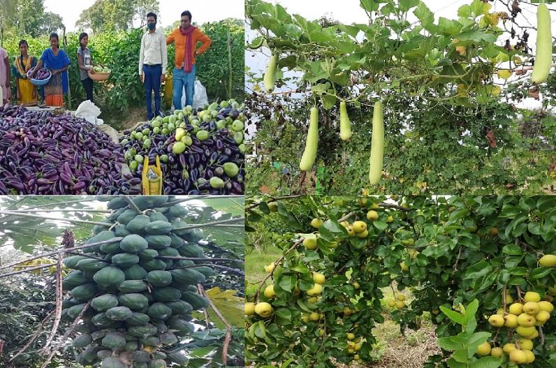 ये फसलें भी शामिल हुई राजीव गांधी किसान न्याय योजना में, फल-फूल, सब्जी और मसाले की खेती करने वालों को मिलेगी इनपुट सब्सिडी